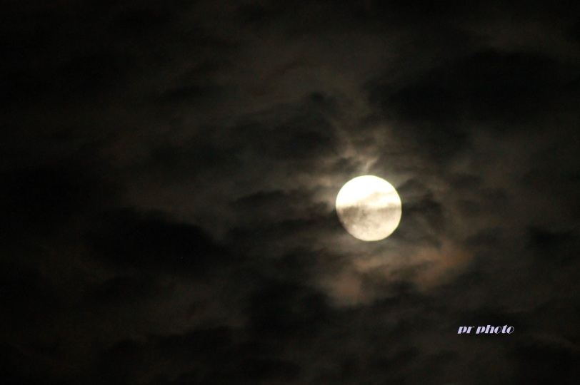 https://thoughtsandentanglements.files.wordpress.com/2014/01/my-first-moon-shot.jpg?w=812&h=541