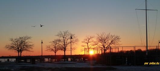 sunset from pier gulls