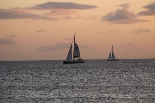 IMG_5633 sail boats