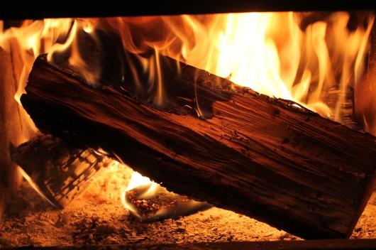 toasty fire 3