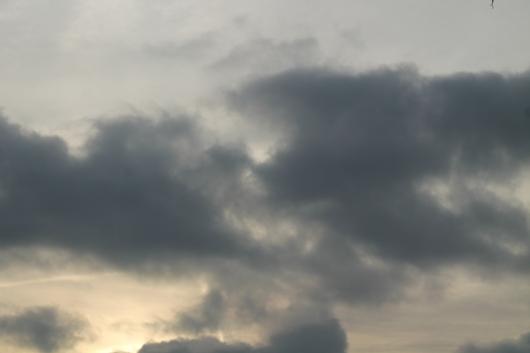 IMG_8253 grey skies
