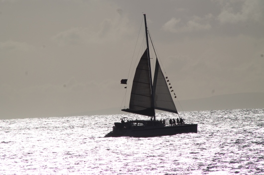 IMG_5468 sail boat
