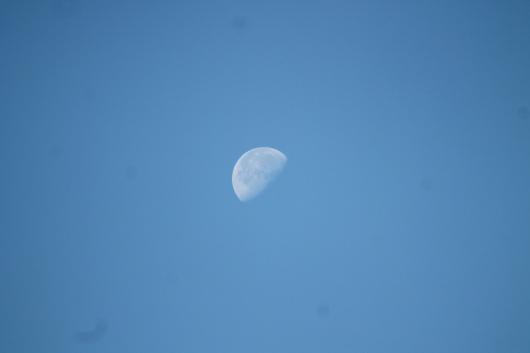 IMG_9420 day moon