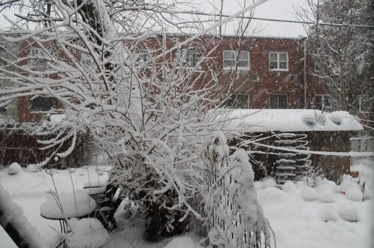 snow base 2