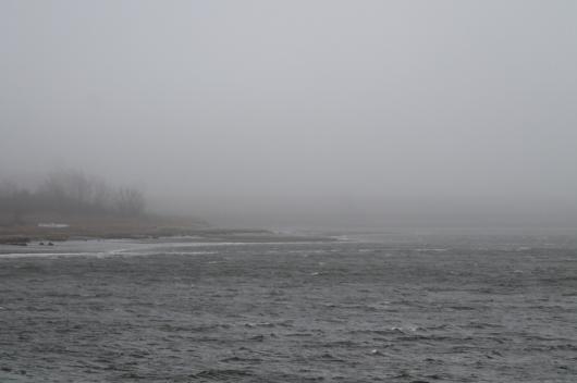 water pier fog