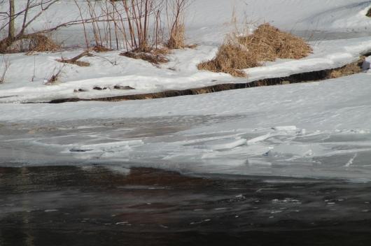 frozen river the best