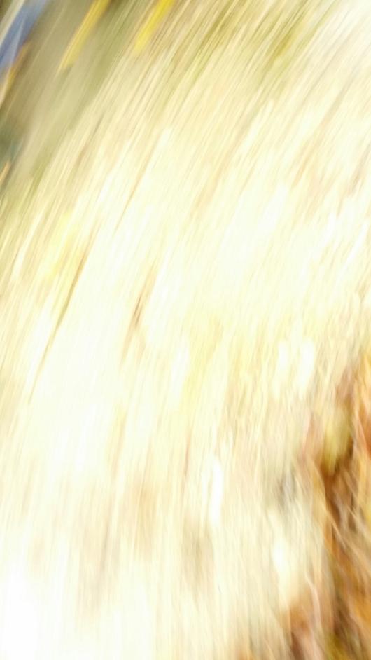 wpid-20141106_130616-blonde.jpg.jpeg