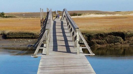 wpid-bridge.jpg