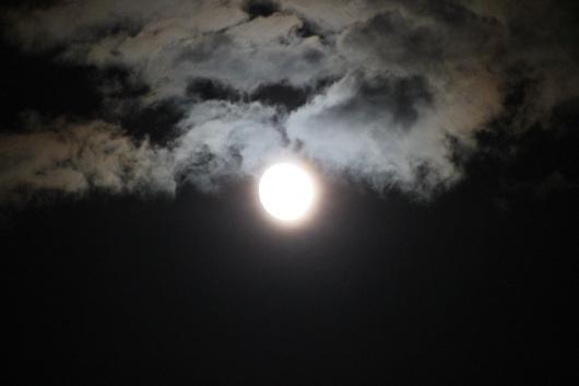 IMG_8806 full moon