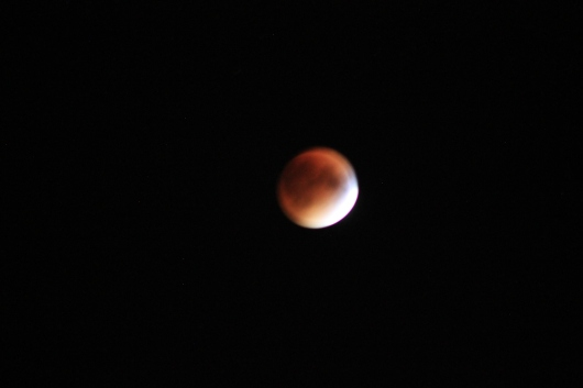IMG_0910 blood moon
