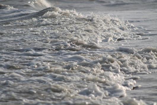 ocean-img_2395