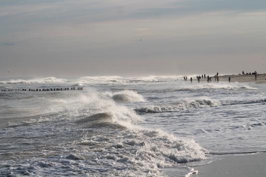 ocean-img_2411