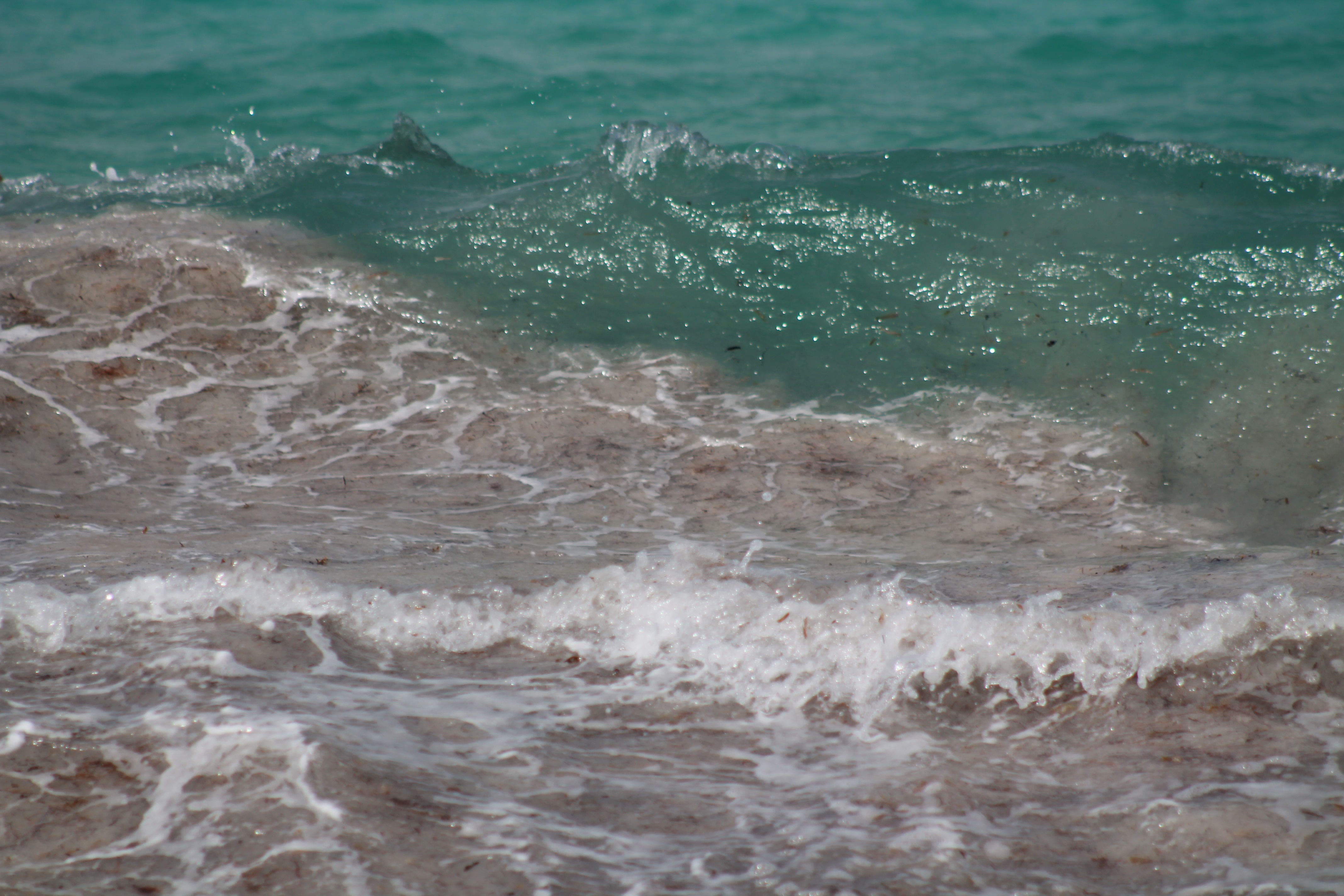 this wave IMG_1883.jpg