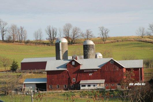 farm-one-1875836541.jpg